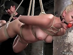 Bald snatch blond hair babe fingered in hogtie